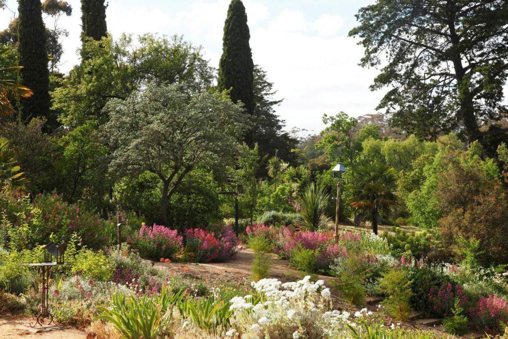 Buda Garden Vista