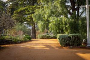New Buda paths
