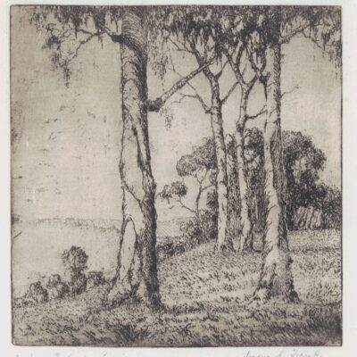 Landscape with Gum Trees 1925-30 Etching by Jorgen A. Frank